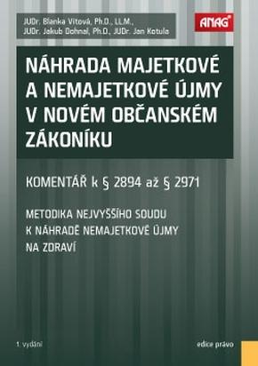 NÁHRADA MAJETKOVÉ A NEMAJETKOVÉ ÚJMY V NOVÉM OBČAN.ZÁKON.